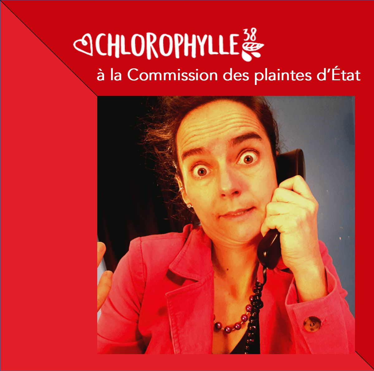 Visuel de Chlorophylle38 à la Commission des plaintes d'État de Jacinthe Laforte